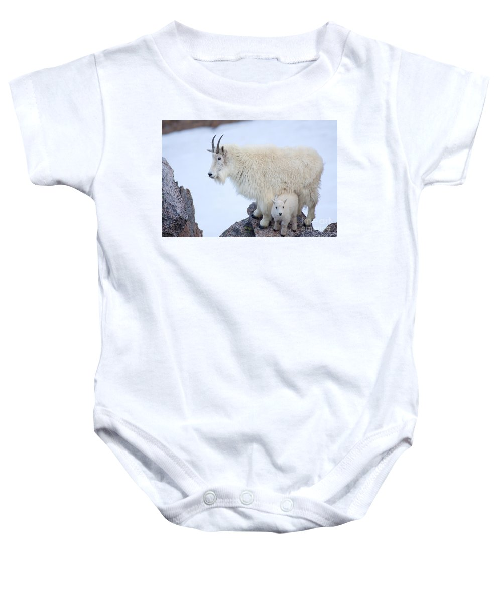 Mountain Goats Baby Onesie featuring the photograph Me And Mom by Jim Garrison
