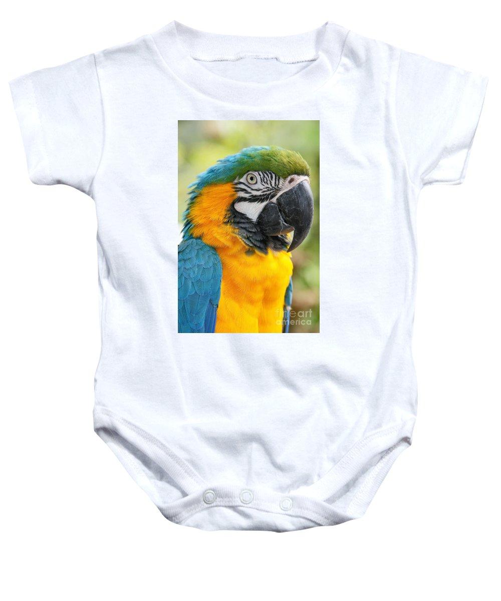 Aloha Baby Onesie featuring the photograph Mele E Manono Ia Ea Macao Tropical Birds Of Hawaii by Sharon Mau