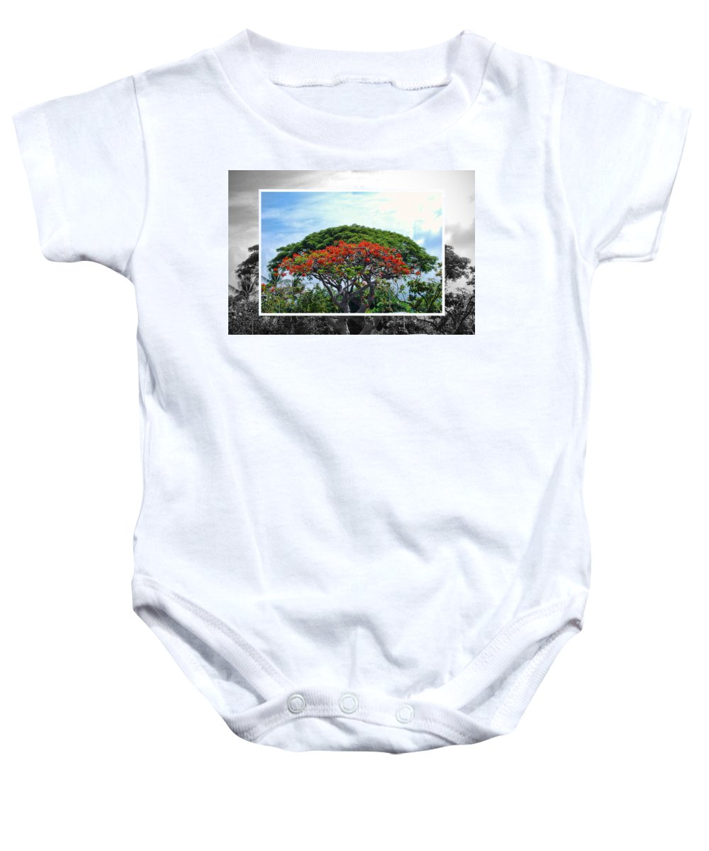Nature Baby Onesie featuring the photograph Monkey Pod Trees - Kona Hawaii by Paulette B Wright
