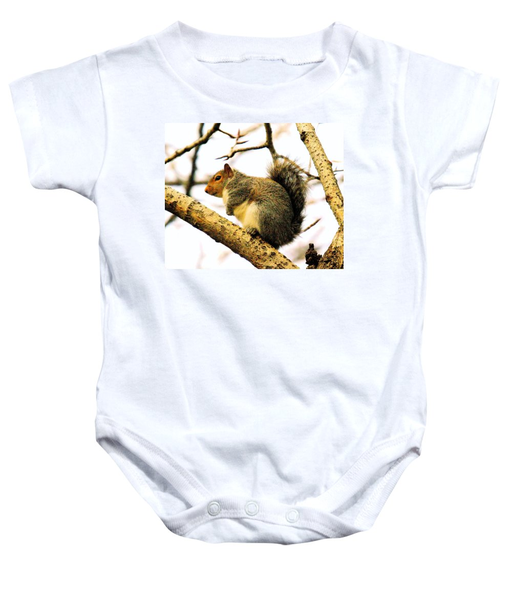 Squirrels Baby Onesie featuring the photograph Mr Fat And Sassy by Jeff Swan
