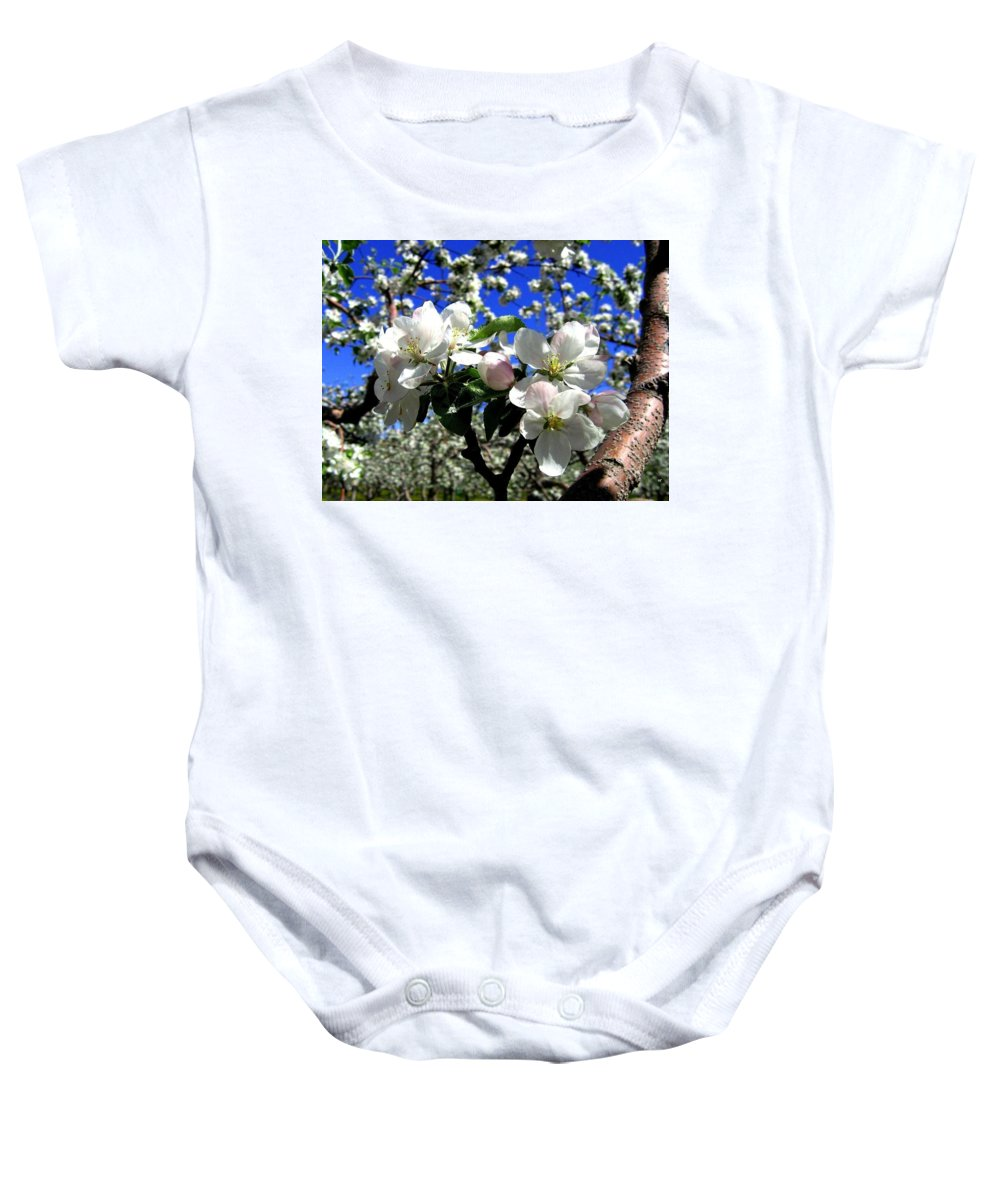 Apple Blossoms Baby Onesie featuring the photograph Orchard Ovation by Will Borden