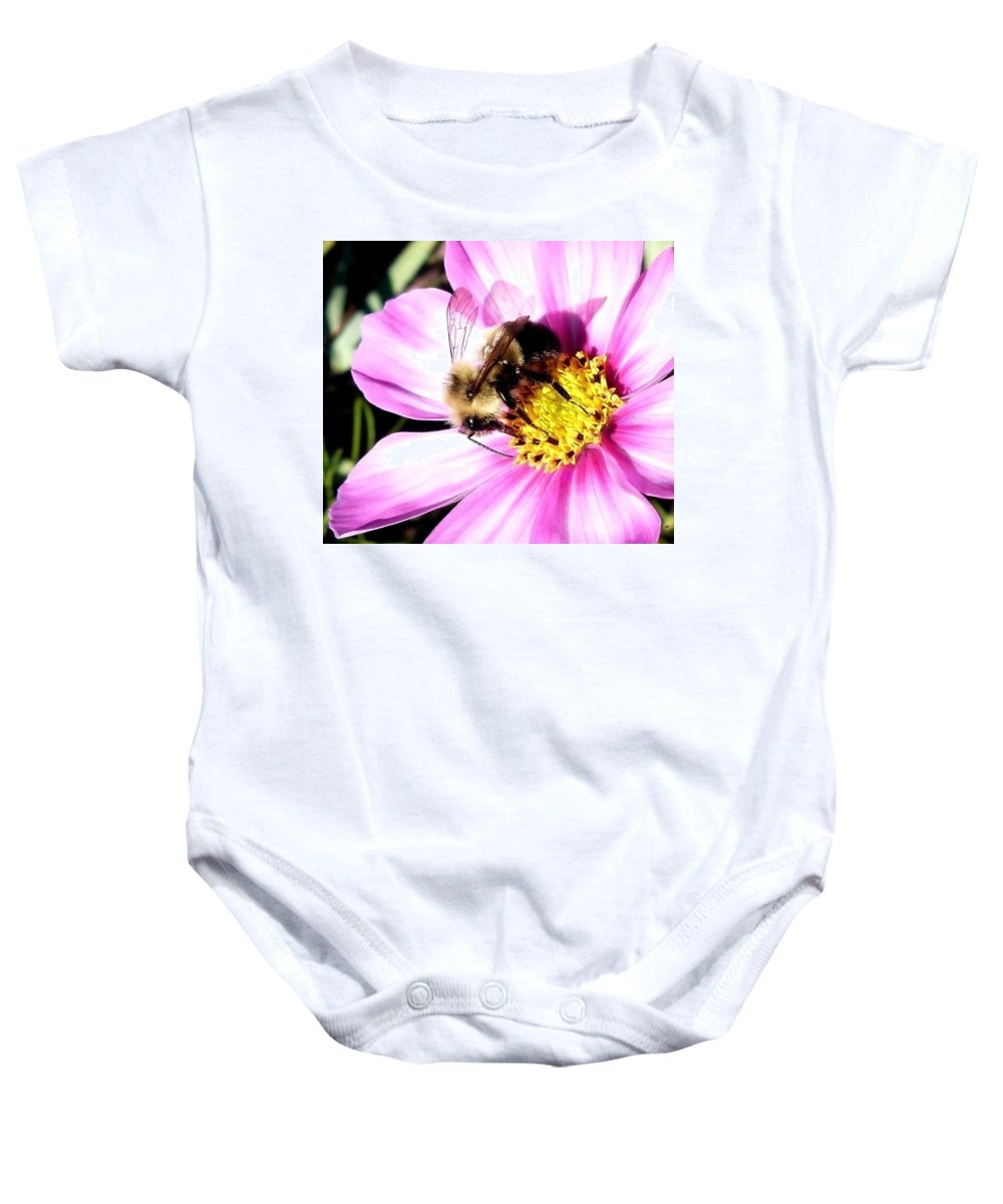 Bumblebee Baby Onesie featuring the photograph Persistence Into October by Will Borden