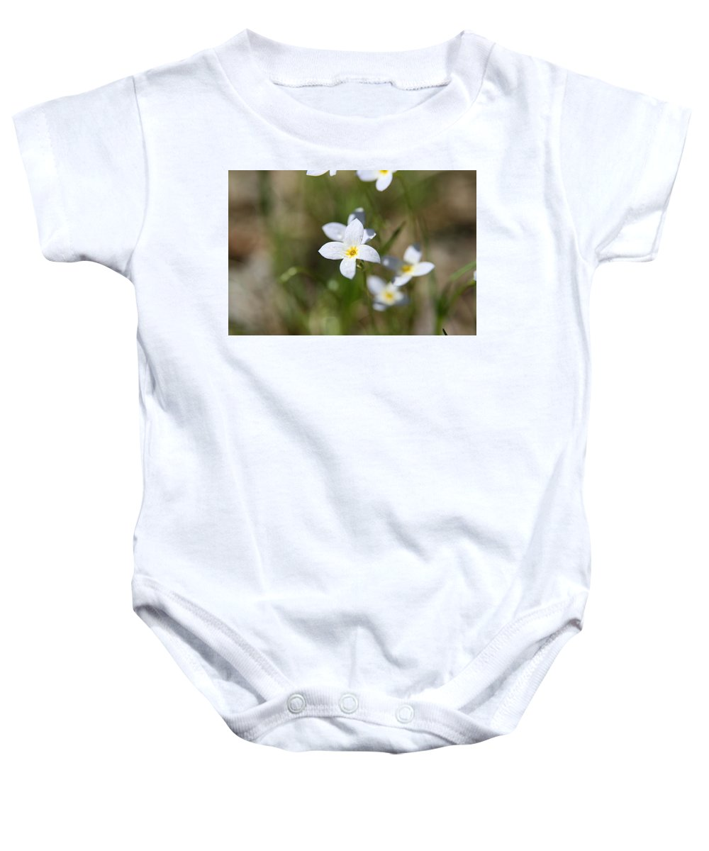 Delicate Connecticut Wildflower Baby Onesie featuring the photograph Simplify by Neal Eslinger