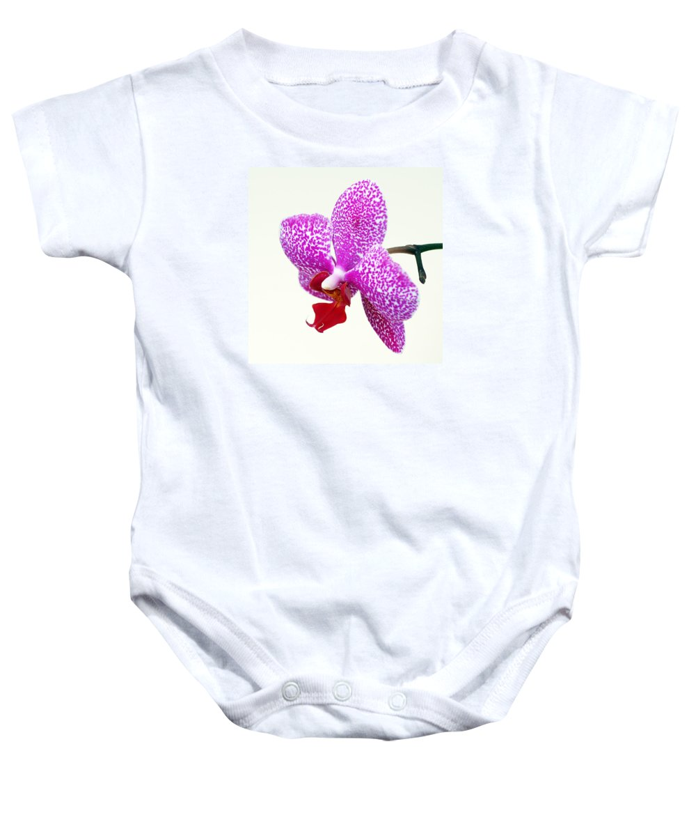 Orchid Baby Onesie featuring the photograph Speak Up by Bill Morgenstern
