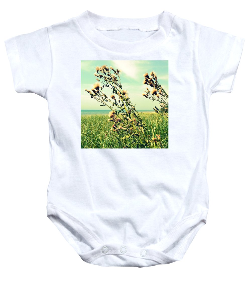 Horizon Baby Onesie featuring the photograph Thistle On The Beach by Michelle Calkins
