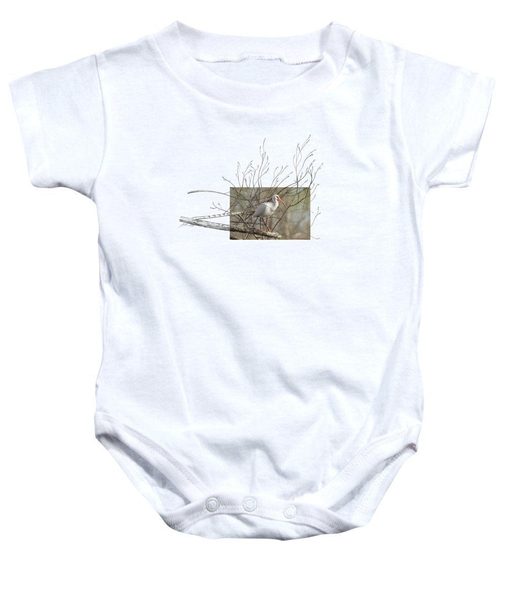 White Ibis Baby Onesie featuring the photograph White Ibis by Andrew McInnes