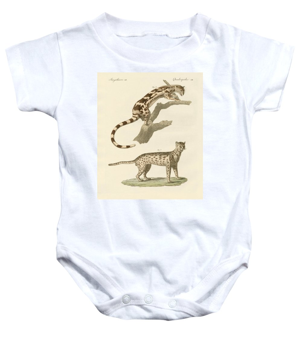 Bertuch Baby Onesie featuring the drawing Wild Animals by Splendid Art Prints