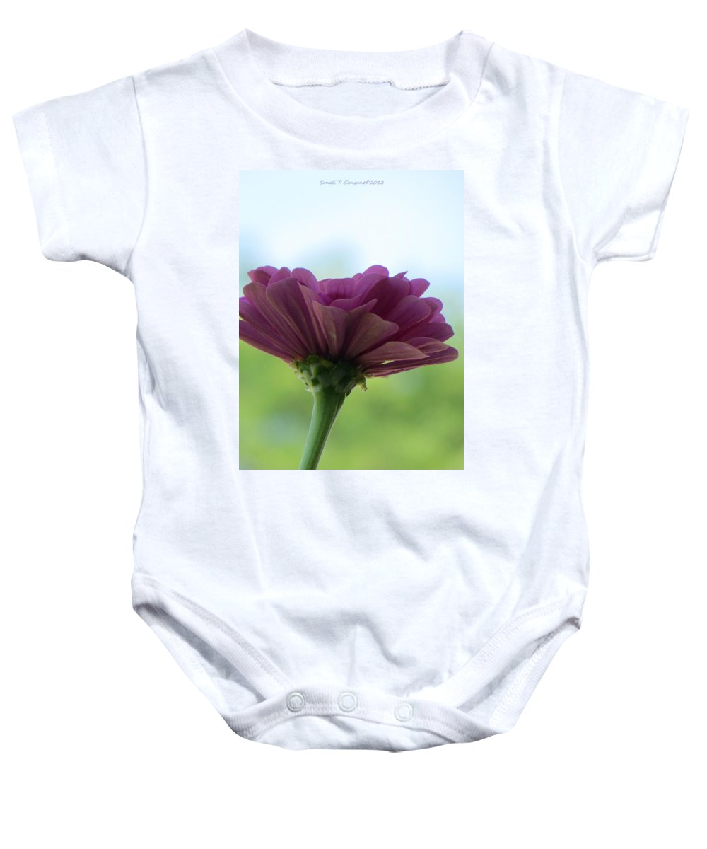 Pink Dreams Baby Onesie featuring the photograph Zinnia Dream by Sonali Gangane