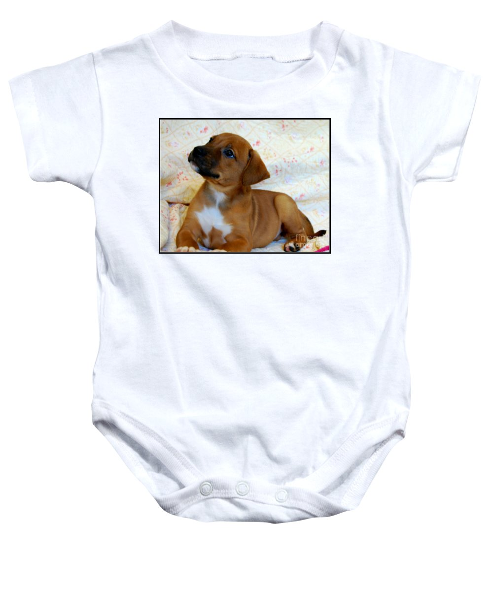 Animals Baby Onesie featuring the photograph  Take Me Home Please by Peggy Franz
