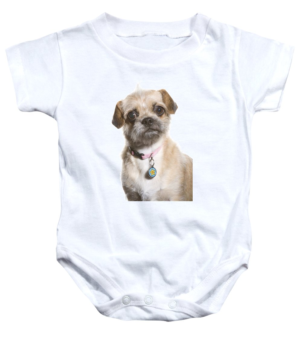 Dog Baby Onesie featuring the photograph All In The Eyes by Monte Arnold