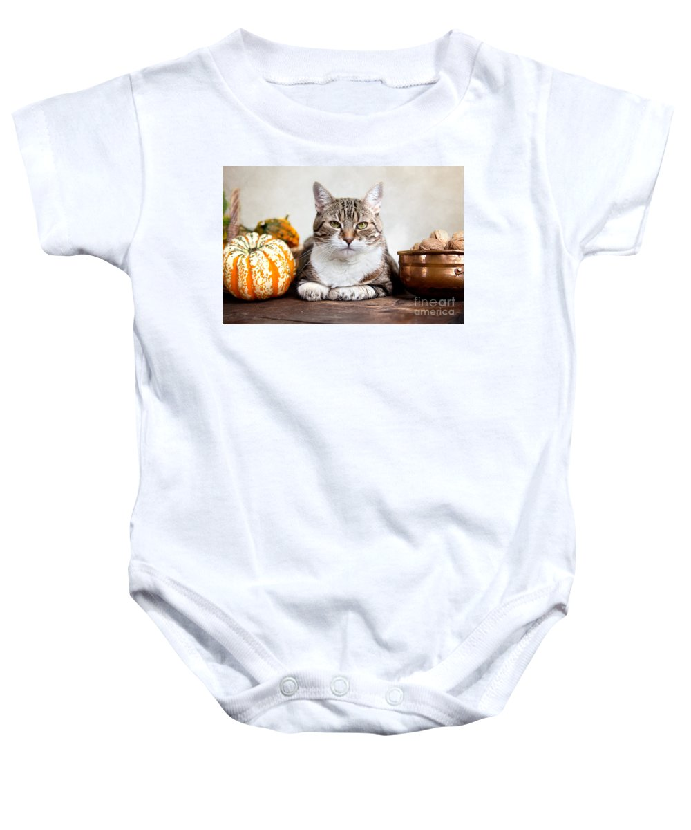 Cat Baby Onesie featuring the photograph Cat And Pumpkins by Nailia Schwarz