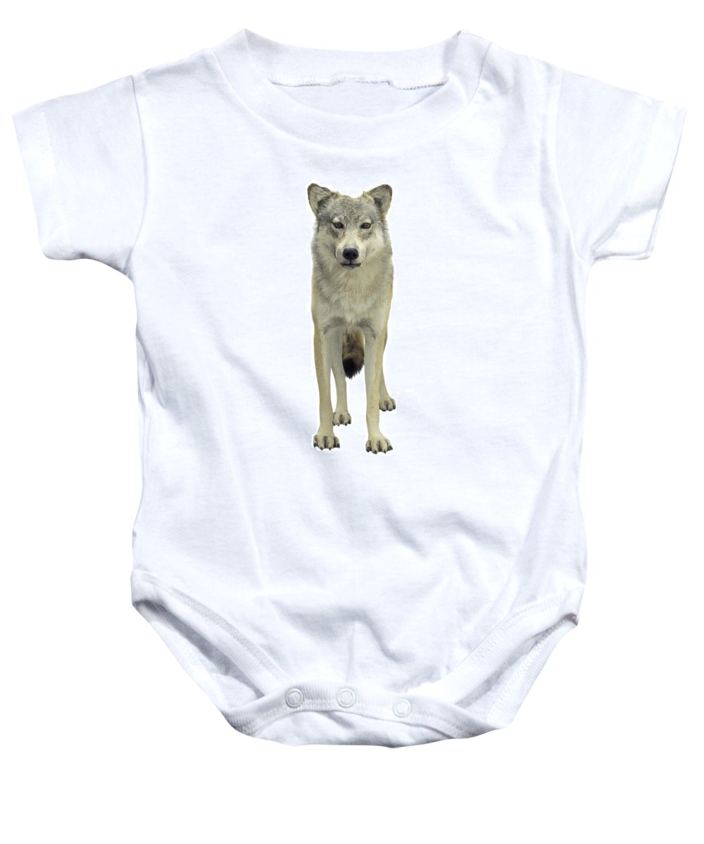 Animal Baby Onesie featuring the photograph A Wolf by Don Hammond