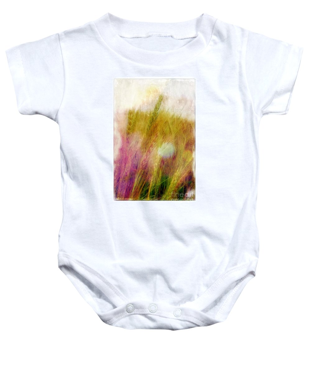 Field Baby Onesie featuring the photograph Another Field Of Dreams by Judi Bagwell