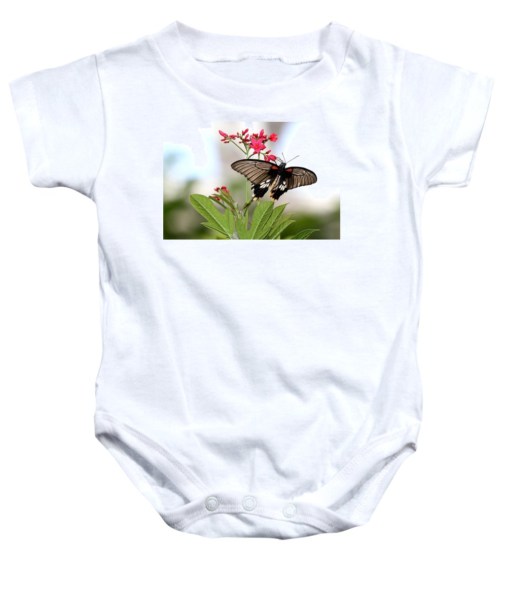 Butterfly Baby Onesie featuring the photograph Butterfly Candy by Elizabeth Winter