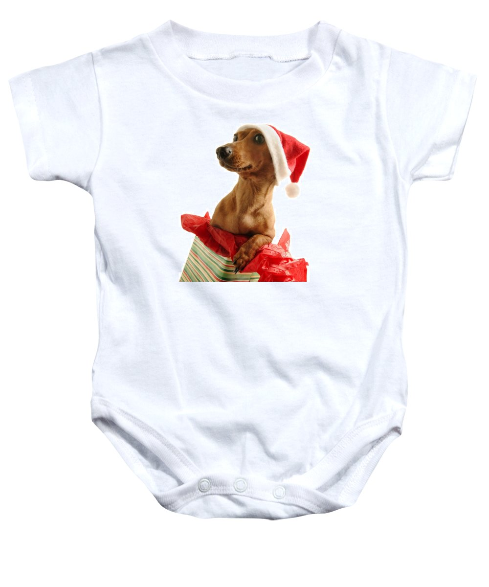 Animal Head Baby Onesie featuring the photograph Dachshund Wearing A Santa Hat by Don Hammond