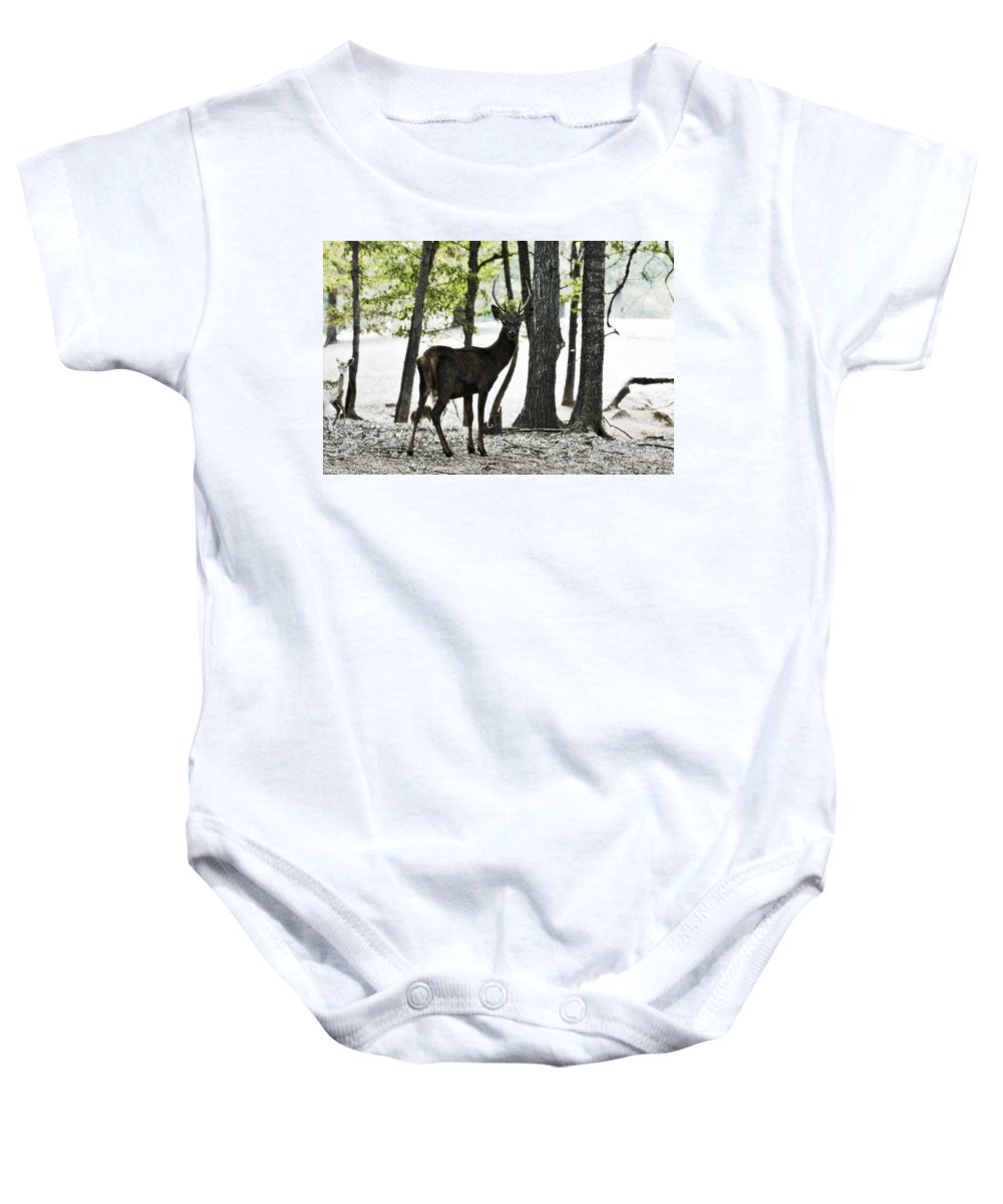 Red Deer Baby Onesie featuring the photograph Deer In The Woods by Douglas Barnard