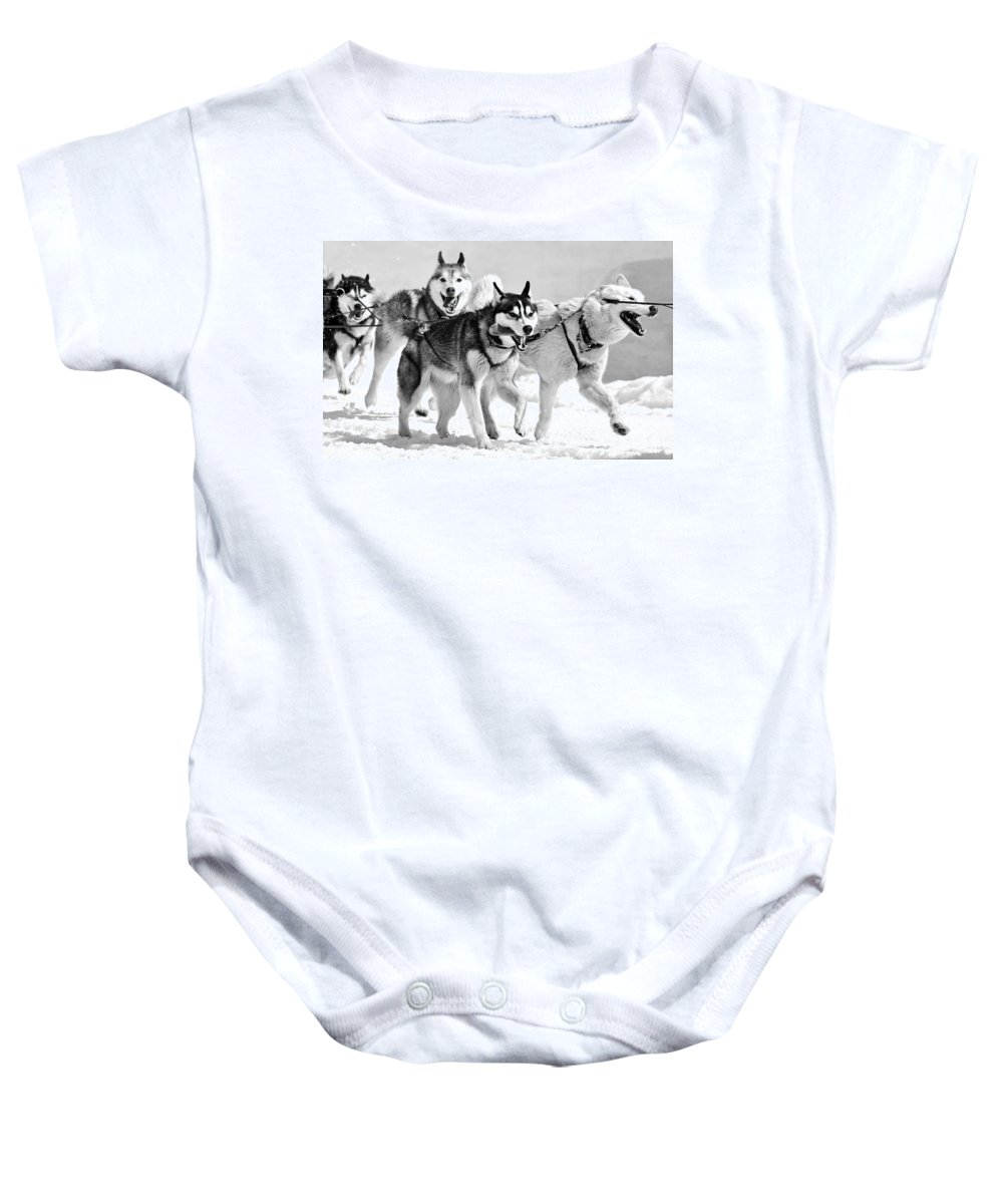 Dog Baby Onesie featuring the photograph Dogs Leashed To A Chariot by Sumit Mehndiratta