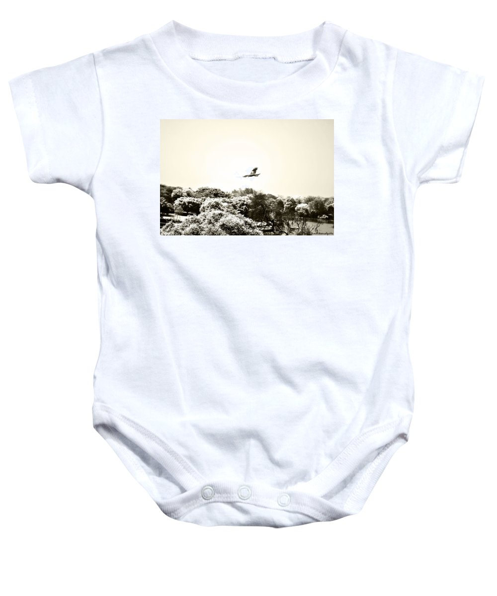 Eagle Baby Onesie featuring the photograph Eagle Flying Above The Forest by Sumit Mehndiratta