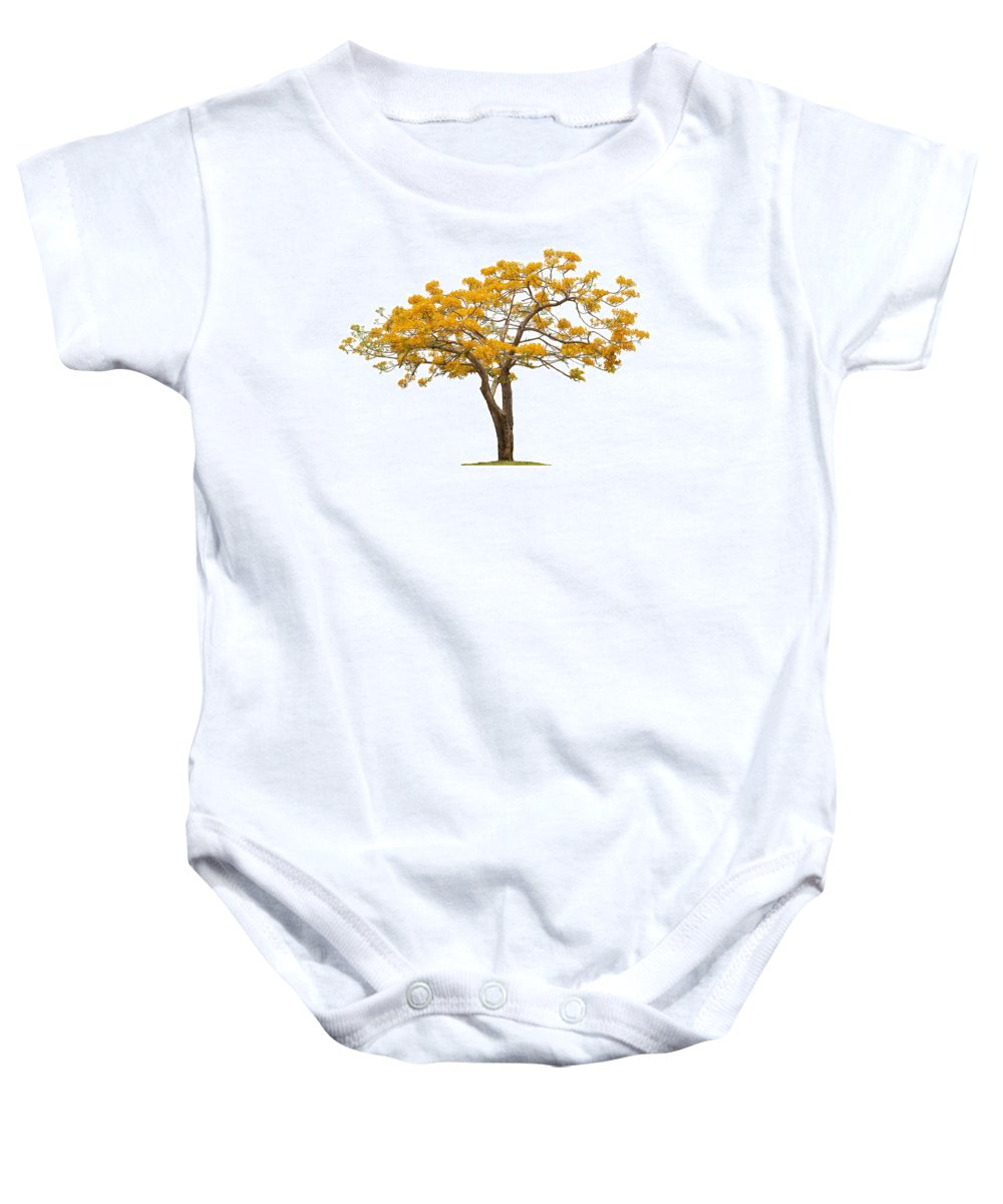 Africa Baby Onesie featuring the photograph Flam Of The Forest by Atiketta Sangasaeng