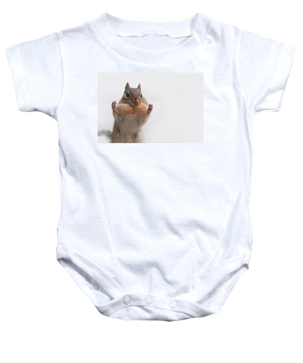 Chipmunk Baby Onesie featuring the photograph Get Your Hands Up by Lori Deiter