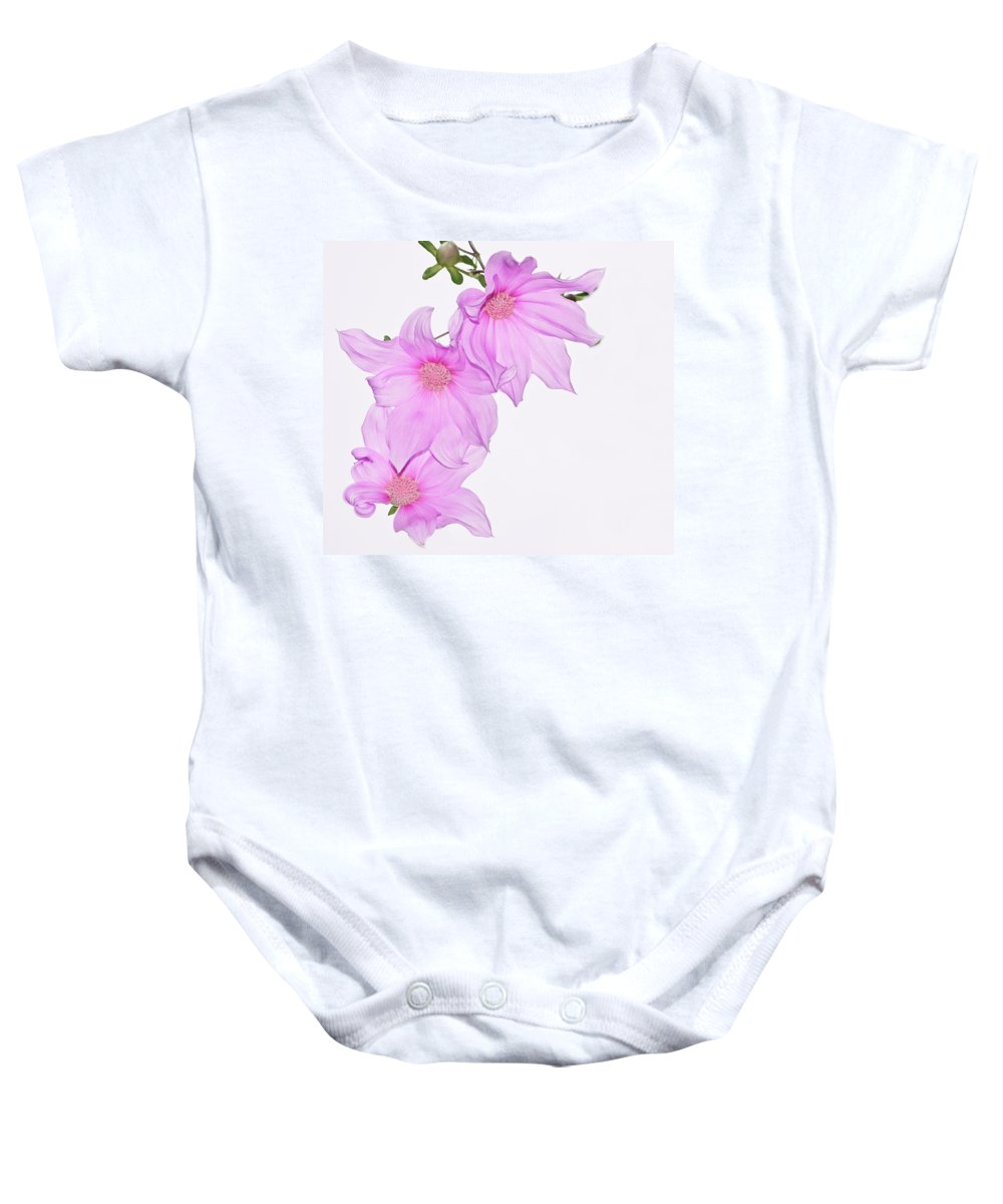 Kathryn Potempski Baby Onesie featuring the photograph In The Pink by Kathryn Potempski