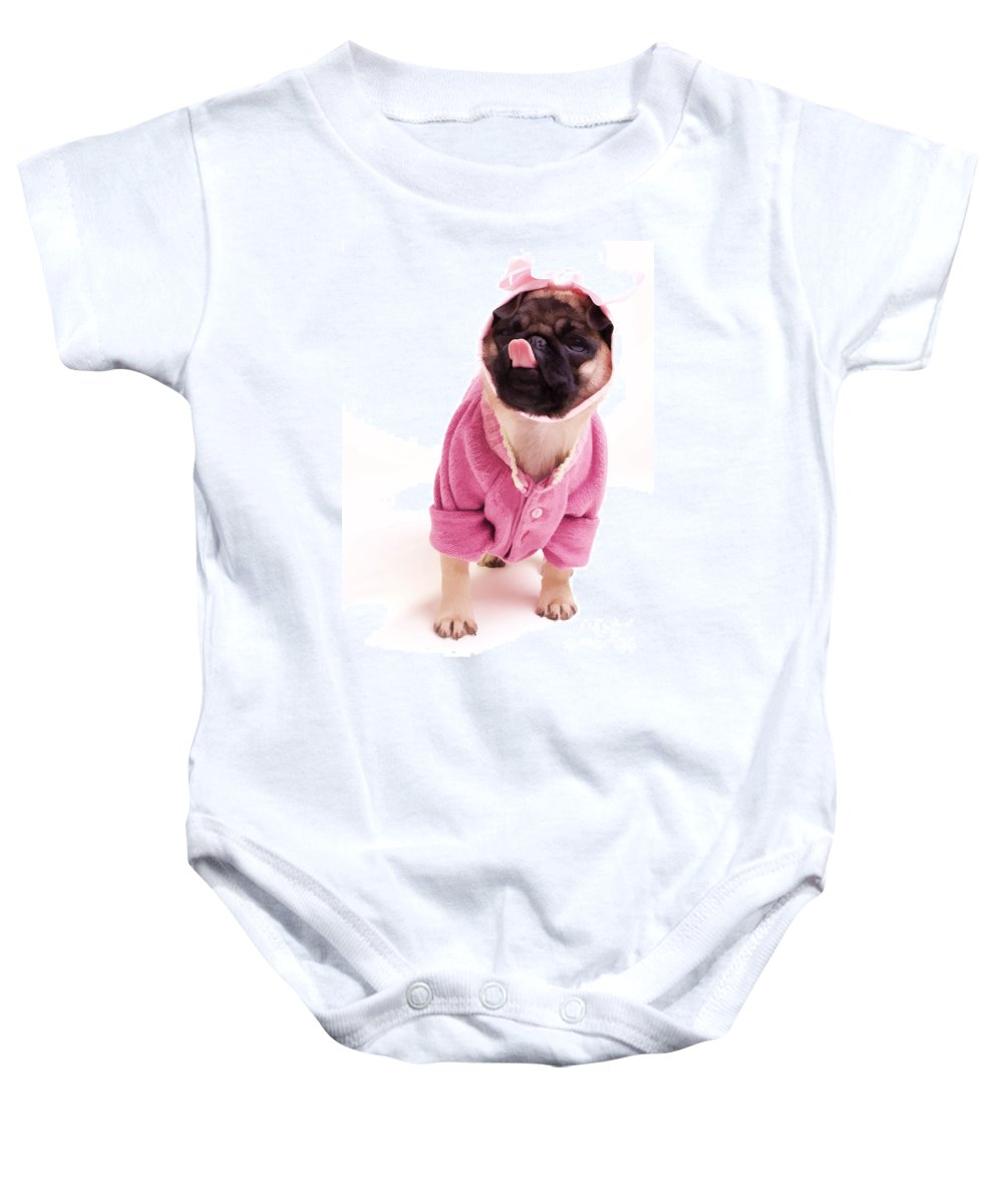 Pug Dog Puppy Pink Sweater Tongue Lick Licking Cute Adorable Sweet Baby Onesie featuring the photograph Lick by Edward Fielding