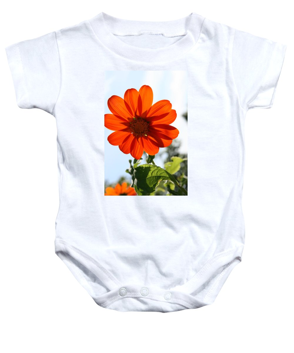 Natures Silhouette Baby Onesie featuring the photograph Floral Silhouette by Neal Eslinger