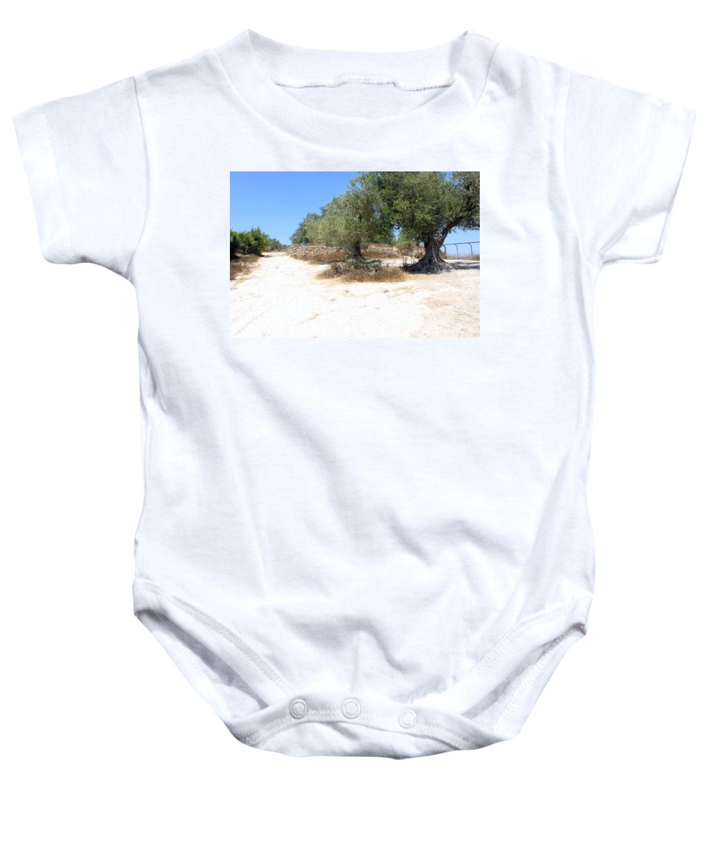 Olive Baby Onesie featuring the photograph Olive Trees In Samaria by Munir Alawi