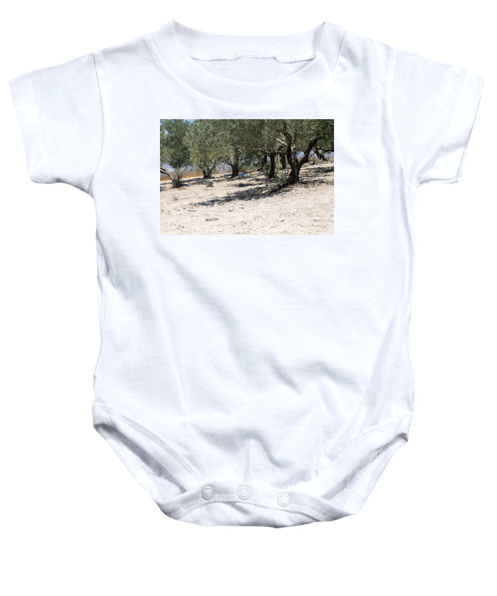 Olive Baby Onesie featuring the photograph Olive Trees In Sebastia Nablus by Munir Alawi