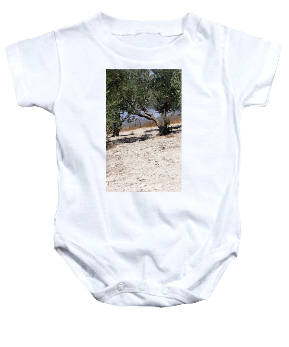 Olive Baby Onesie featuring the photograph Olive Trees Standing Alone by Munir Alawi