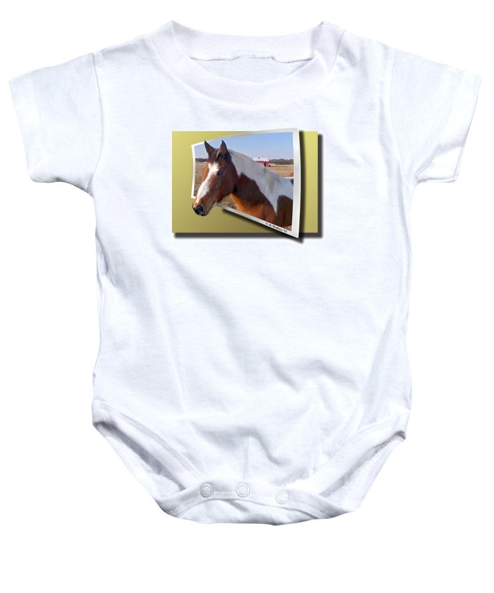 2d Baby Onesie featuring the photograph Pony Posing by Brian Wallace