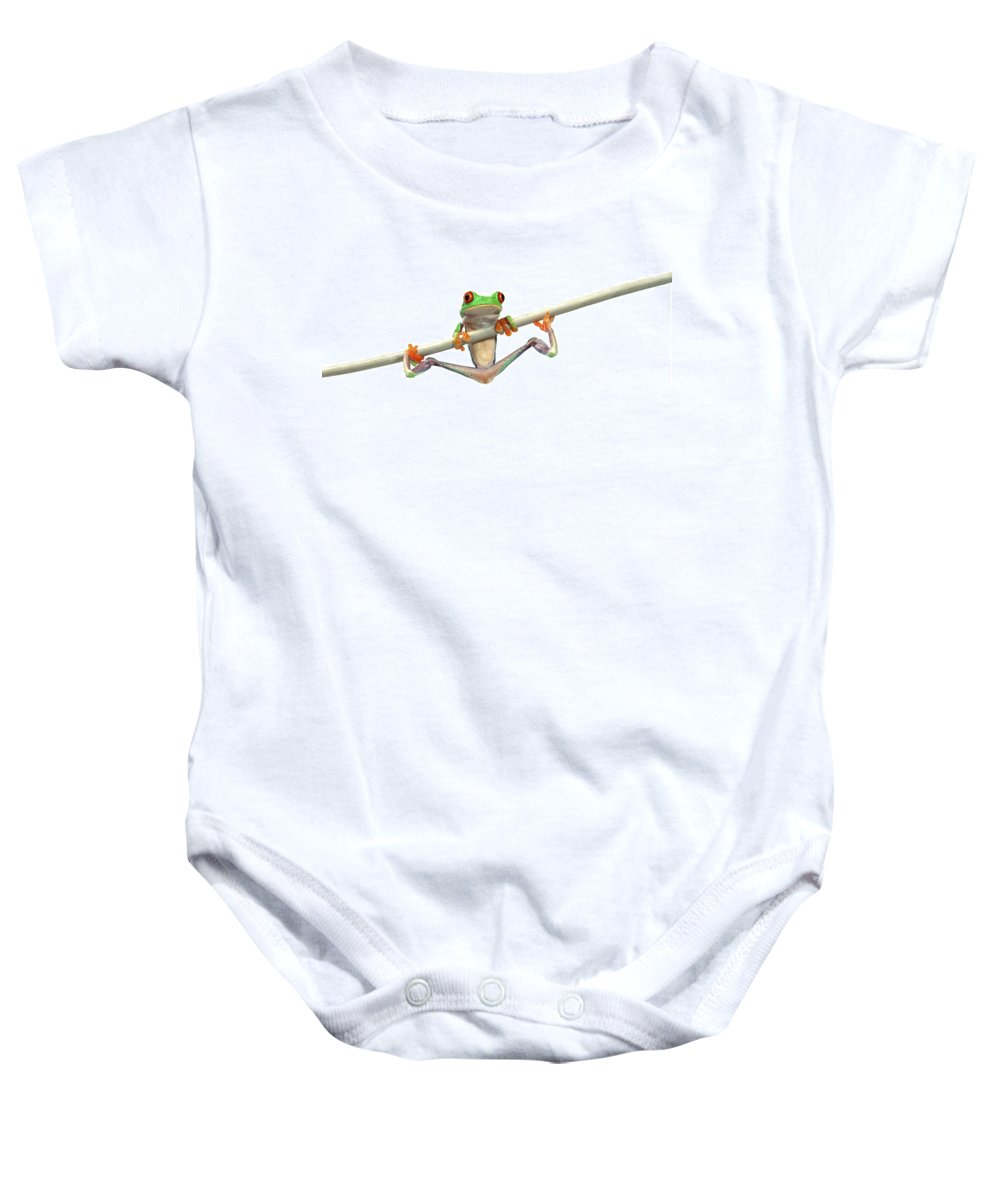 Amphibian Baby Onesie featuring the photograph Red-eyed Tree Frog Agalychnis Callidryas by Corey Hochachka