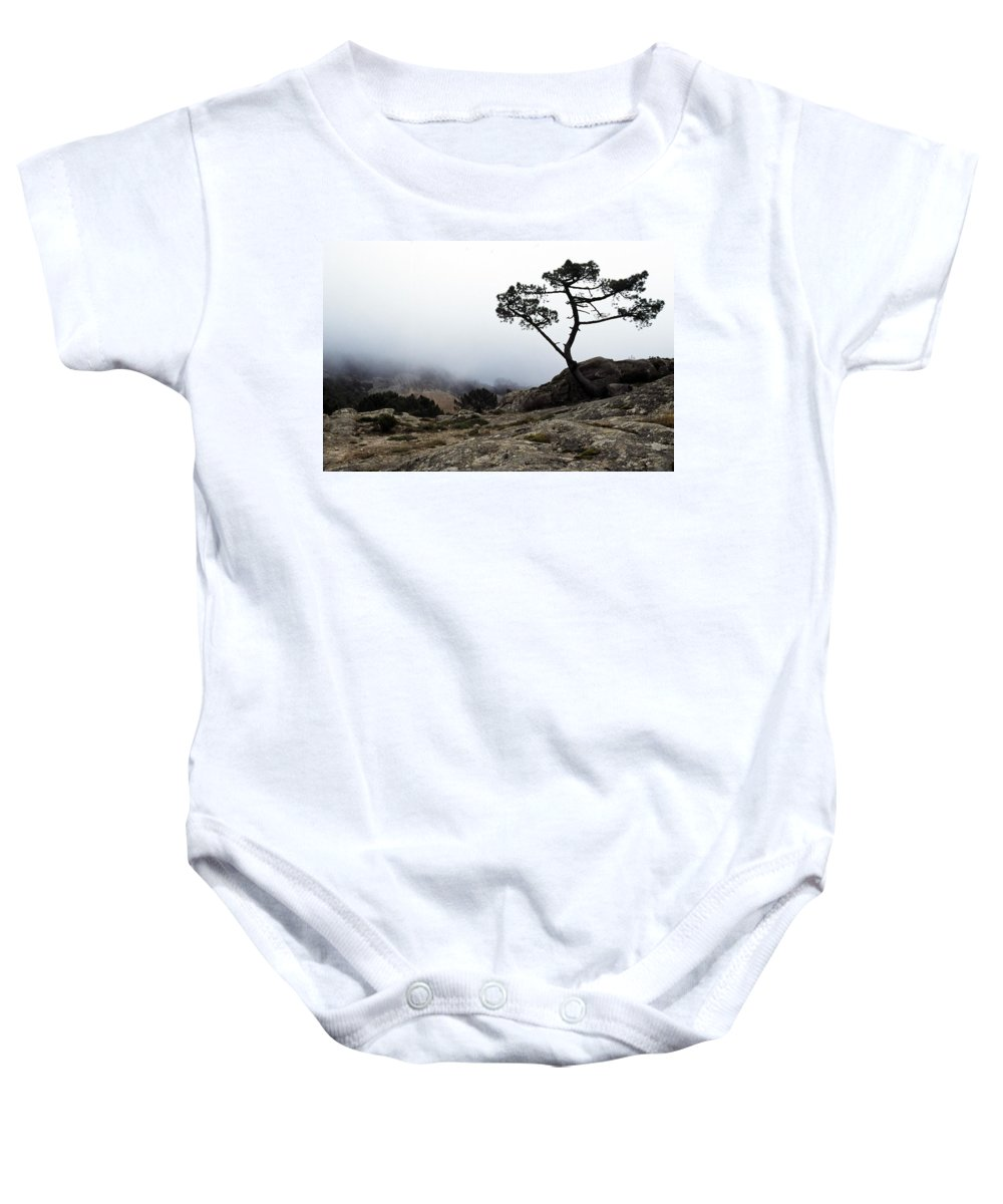 Beauty In Nature Baby Onesie featuring the photograph Silhouette Of Tree In Mist by John Doornkamp