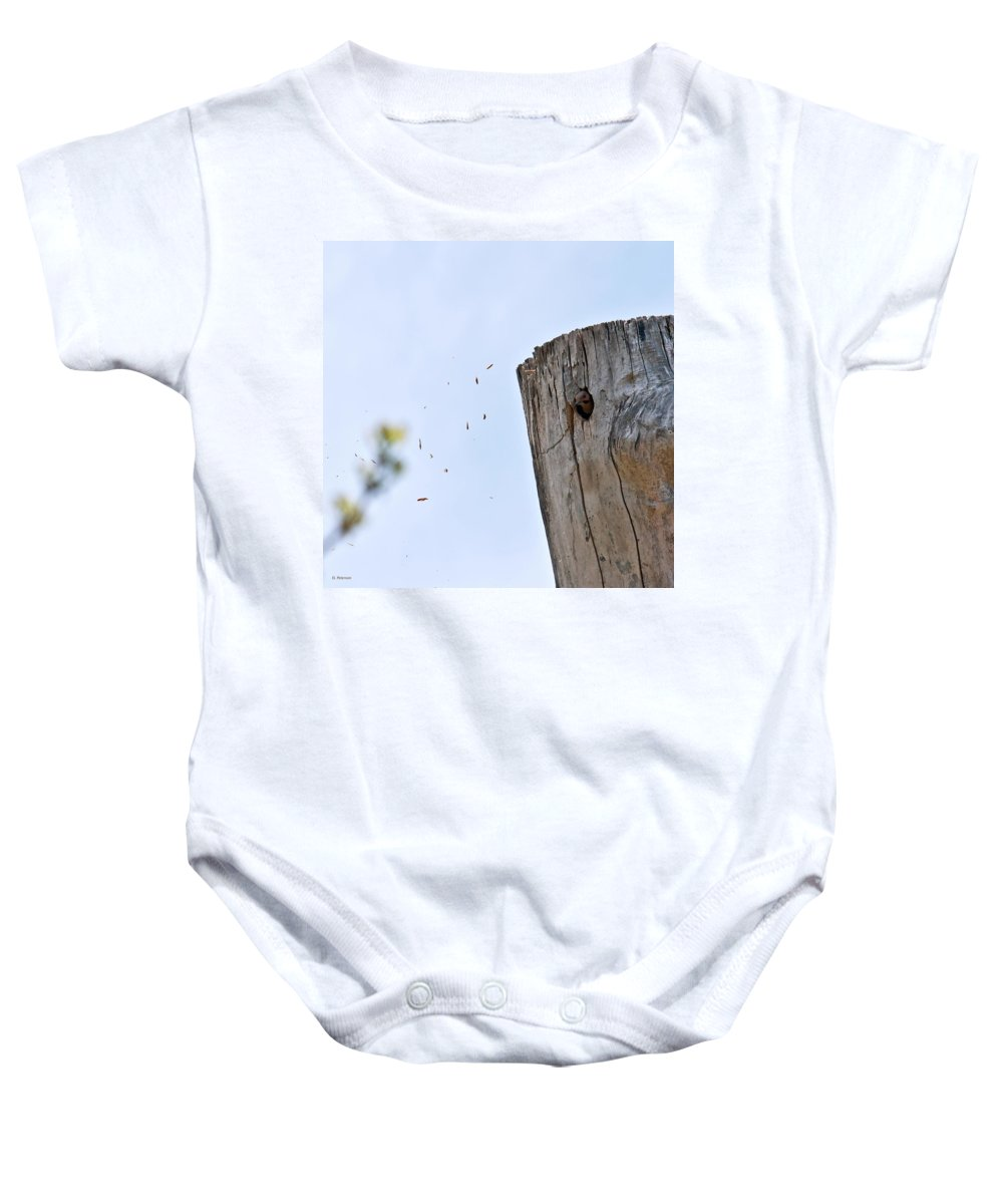 Yellow Shafted Northern Flicker Baby Onesie featuring the photograph Spring Cleaning by Edward Peterson