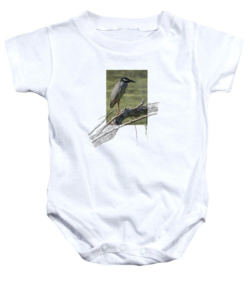 Yellow-crowned Night-heron Baby Onesie featuring the photograph Yellow-crowned Night-heron by Andrew McInnes