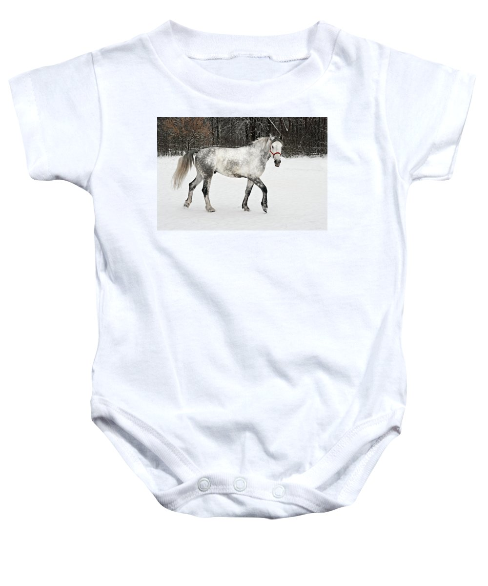Bushes Baby Onesie featuring the photograph Light Grey Horse Goes On A Winter Glade by Vadzim Kandratsenkau