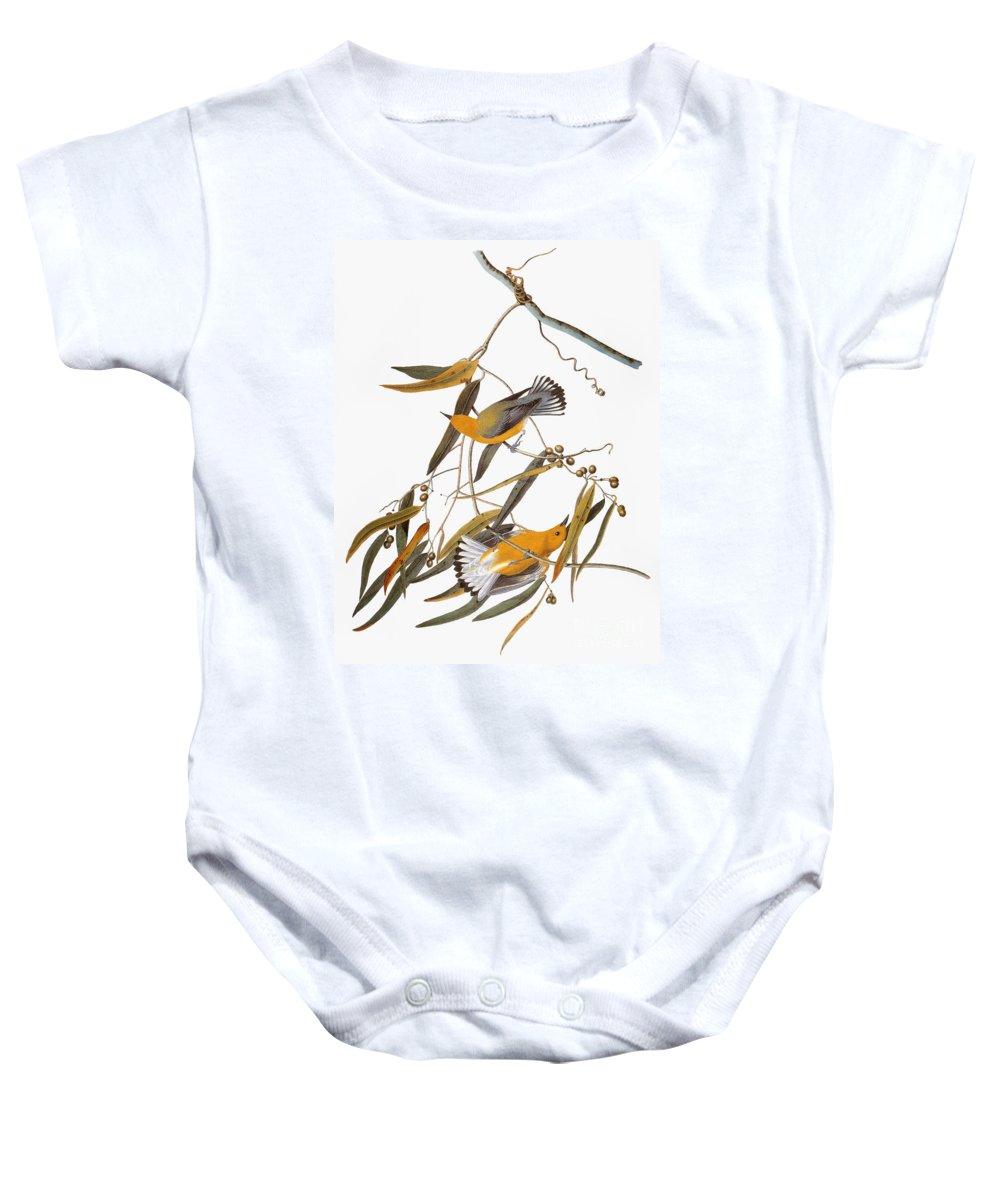 1838 Baby Onesie featuring the photograph Audubon: Warbler by Granger