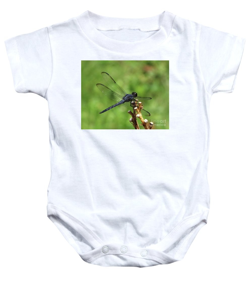 Blue Bug Baby Onesie featuring the photograph Great Blue Skimmer 5 by Lizi Beard-Ward