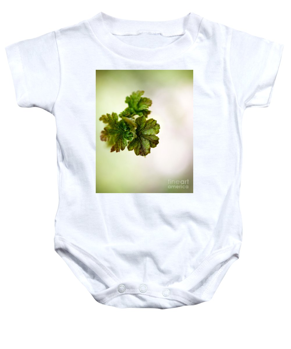 Green Baby Onesie featuring the photograph Growing Red Currant by Kati Finell