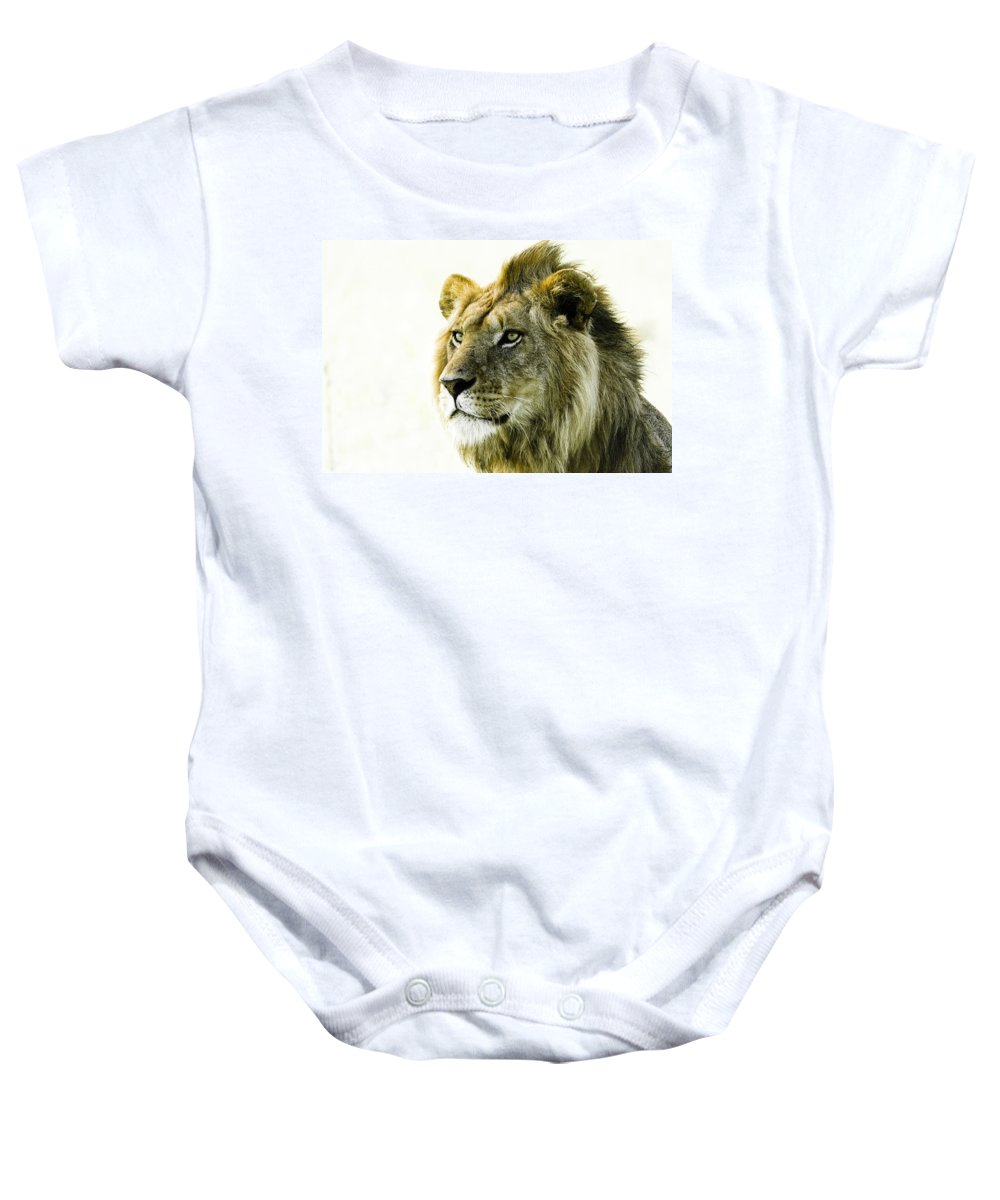 Lion Baby Onesie featuring the photograph Intensity by Michele Burgess