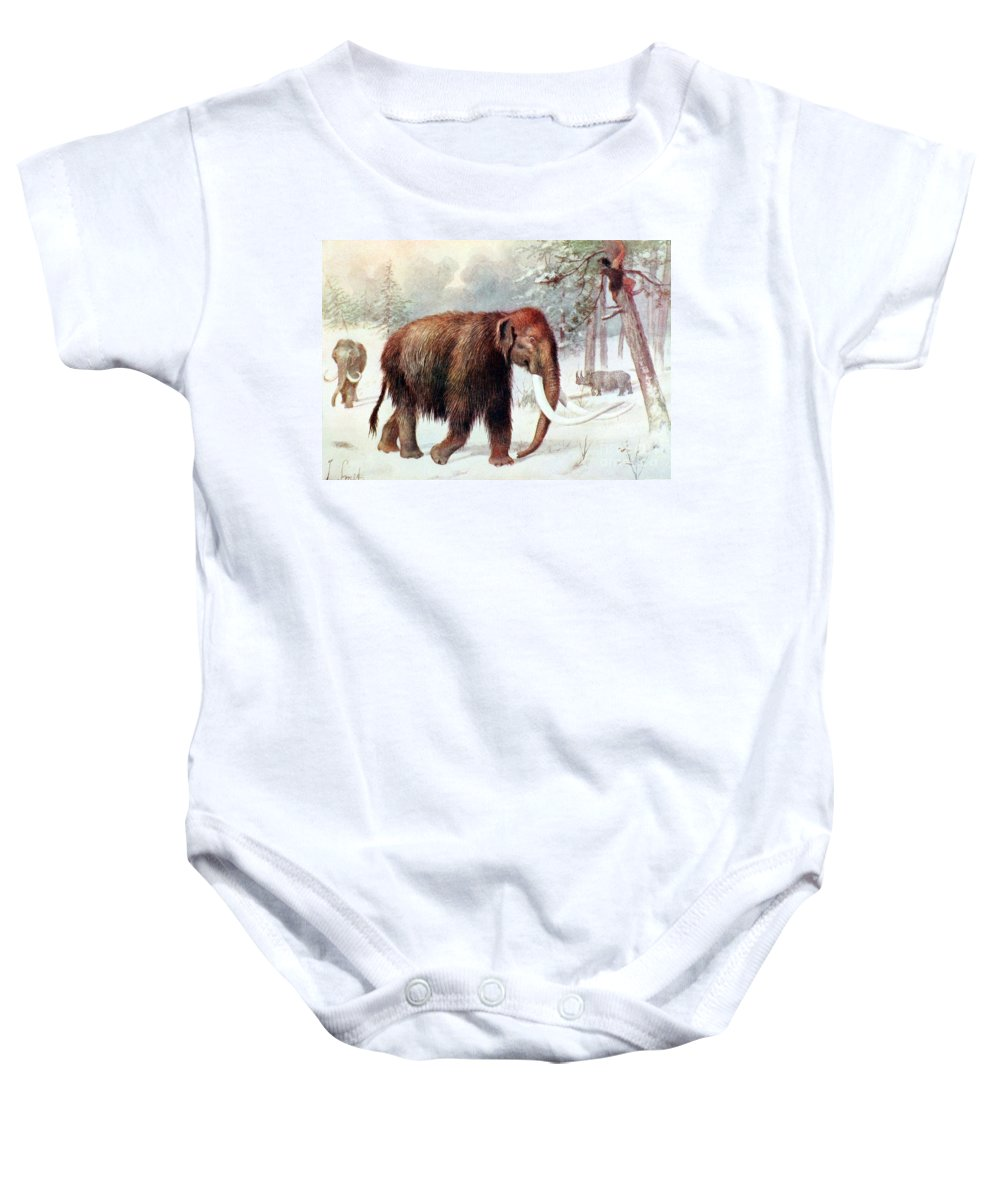 Mammoth Baby Onesie featuring the photograph Mammoth, Cenozoic Mammal by Biodiversity Heritage Library