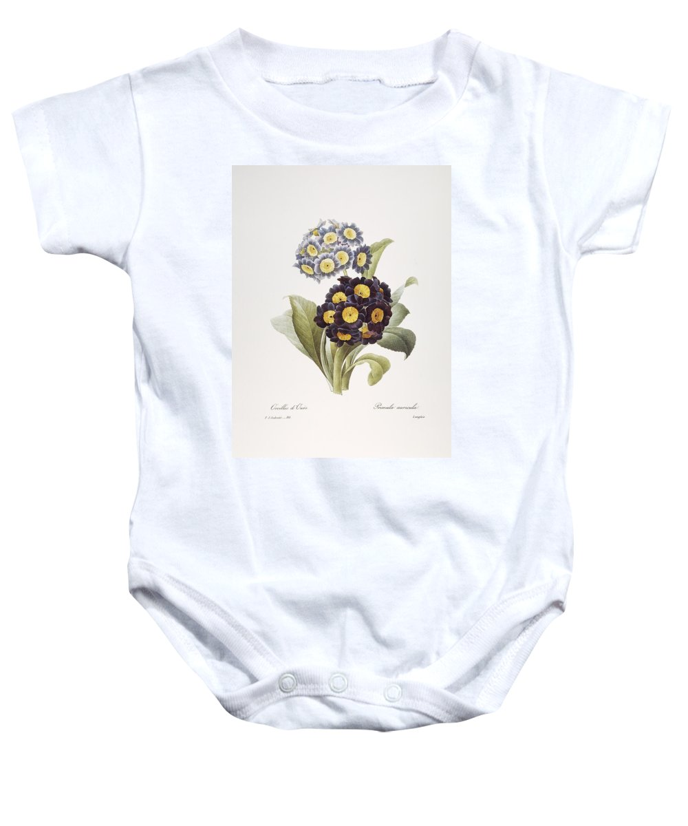 1833 Baby Onesie featuring the photograph Redoute: Auricula, 1833 by Granger