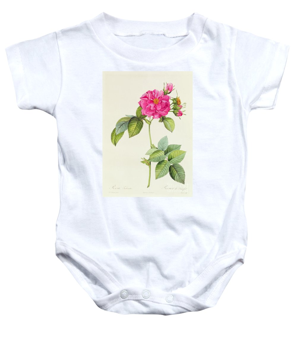 Rosa Baby Onesie featuring the drawing Rosa Turbinata by Pierre Joseph Redoute