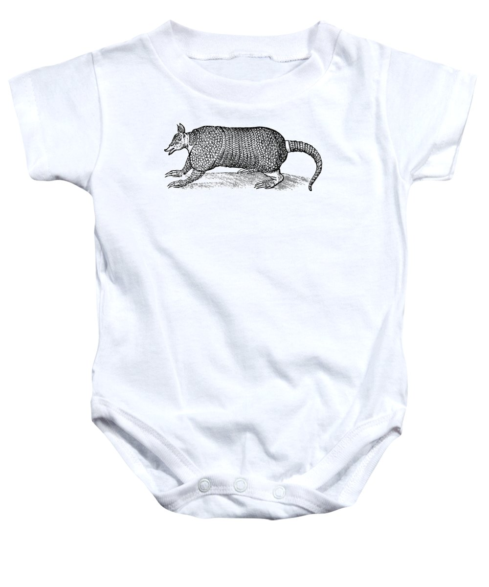 1597 Baby Onesie featuring the photograph Armadillo by Granger