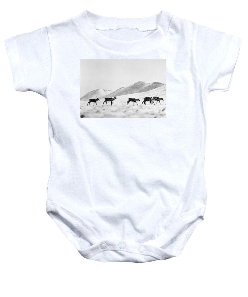 20th Century Baby Onesie featuring the photograph Caribou by Granger