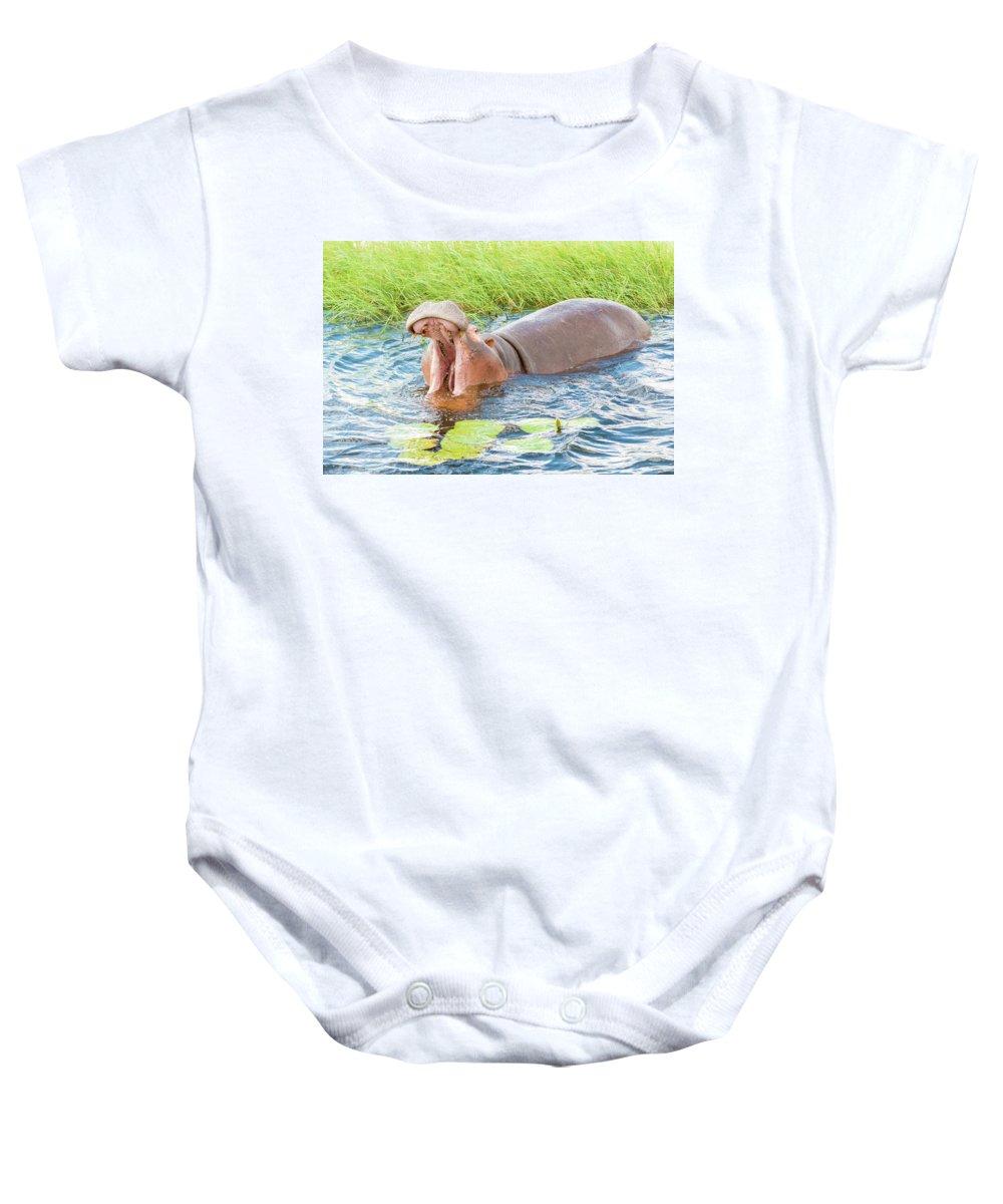 Hippopotamus Baby Onesie featuring the photograph Hippopotamus by Marek Poplawski