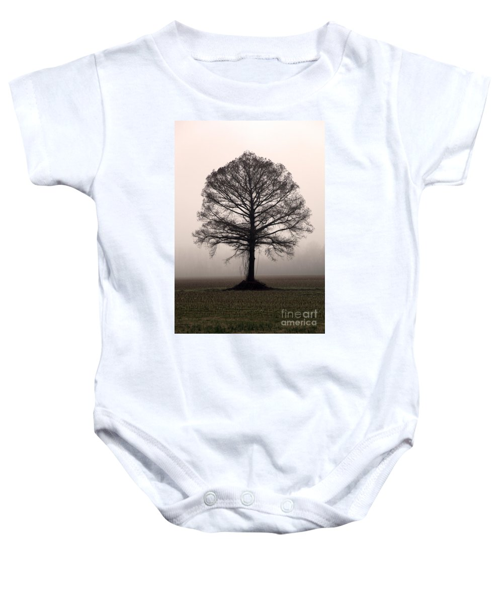 Trees Baby Onesie featuring the photograph The Tree by Amanda Barcon