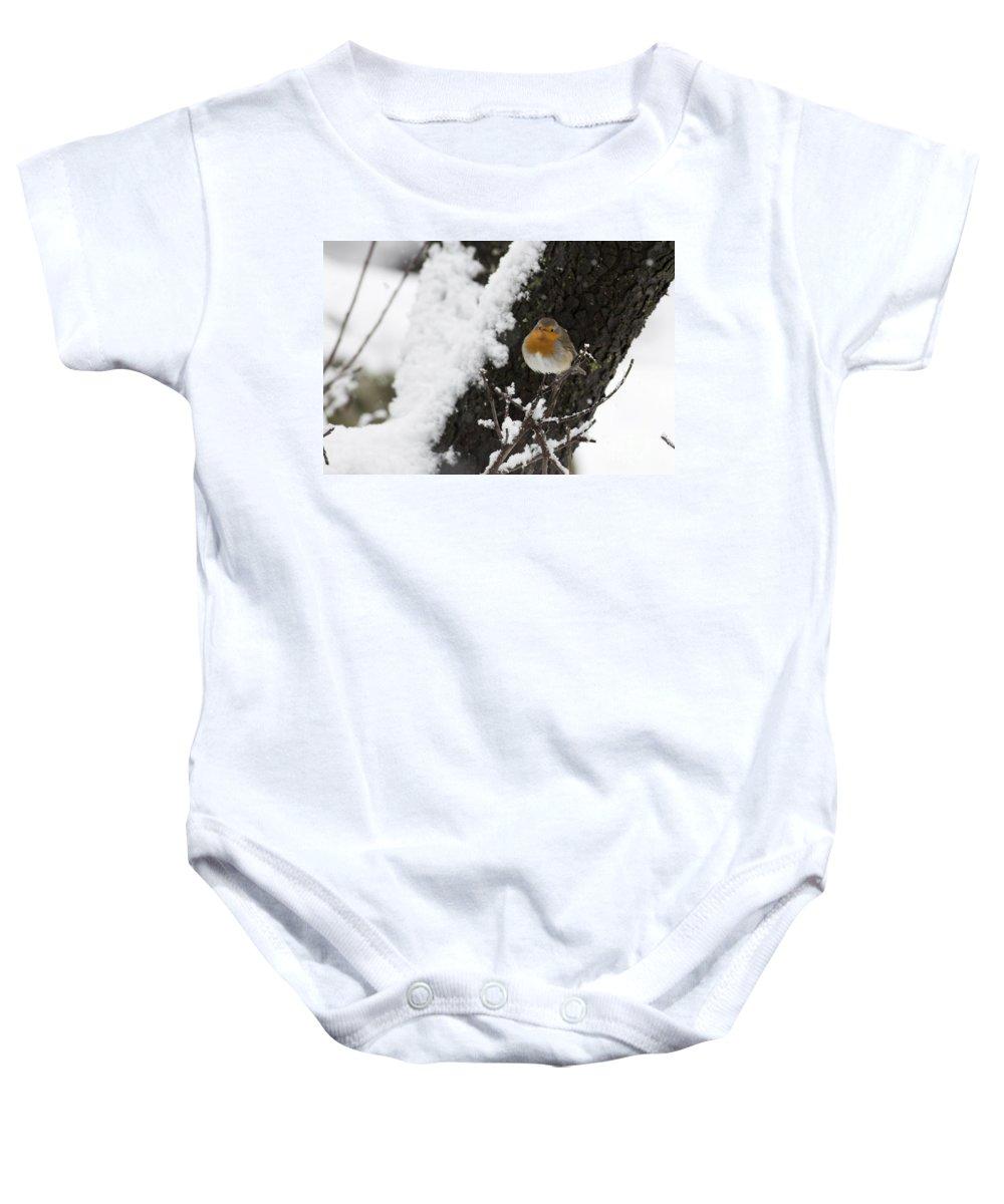 Survival Baby Onesie featuring the photograph European Robin Erithacus Rubecula by Alon Meir