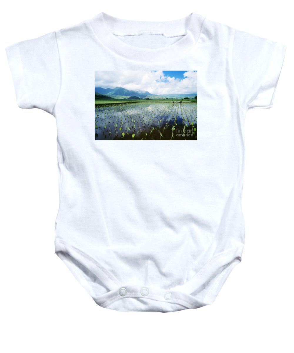 Afternoon Baby Onesie featuring the photograph Kauai, Wet Taro Farm by Bob Abraham - Printscapes