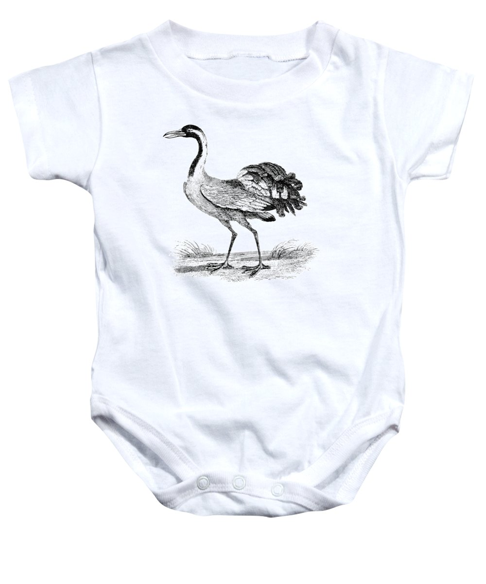 Biology Baby Onesie featuring the photograph Crane by Granger